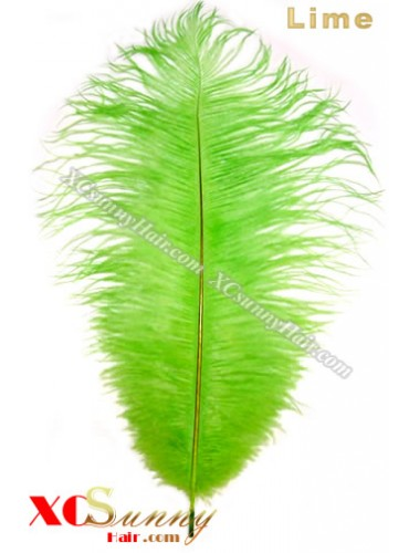 Wholesale - 6 ~ 14 Inch Lime African Ostrich Feather Plume Centerpieces 50 Pcs/Lot [OFP008]